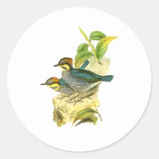 Blue Pitta Round Sticker