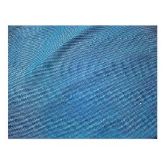 Blue Plastic Mesh Postcard