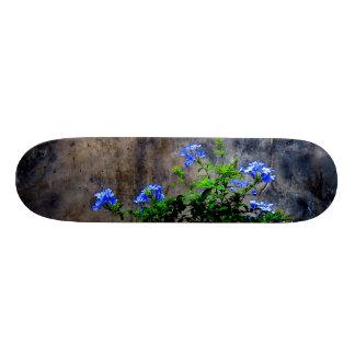 Blue Plumbago 20 Cm Skateboard Deck
