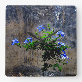 Blue Plumbago Flower Square Wall Clock