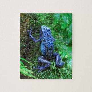 Blue Poison Arrow Frog Puzzle