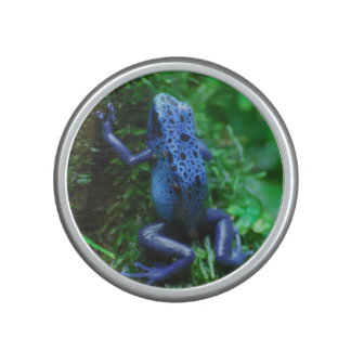 Blue Poison Arrow Frog Speaker