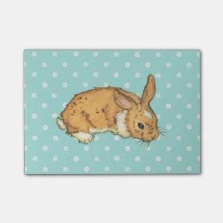 Blue Polka Dot Bunny Sticky Notes