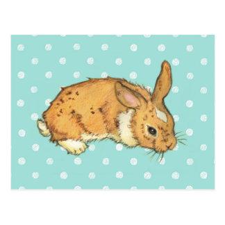 Blue Polka Dot Bunny Postcard