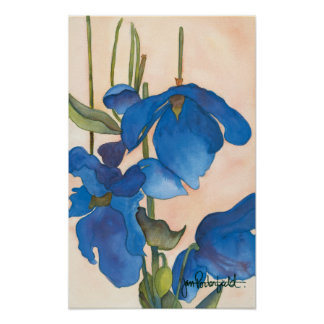 Blue Poppies Print