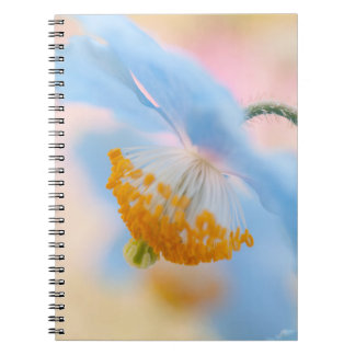 Blue Poppy Spiral Notebooks