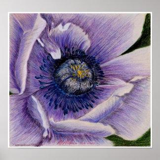 Blue Poppy Print