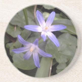 blue purple white star flower coaster