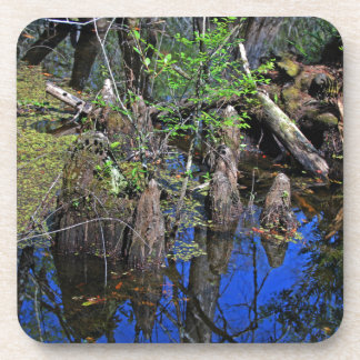 Blue Reflections in the Slough (Fort Myers, FL)- F Coaster