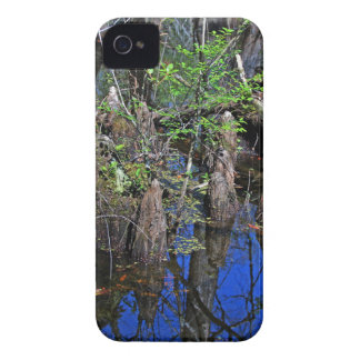 Blue Reflections in the Slough iPhone 4 Case-Mate Cases