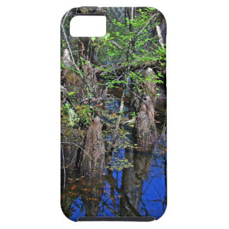 Blue Reflections in the Slough iPhone 5 Cases