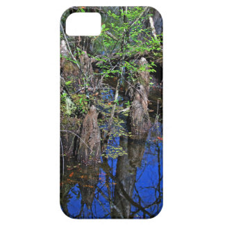 Blue Reflections in the Slough iPhone 5 Covers
