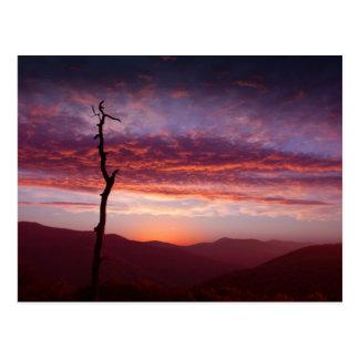 Blue Ridge Mountains at Dawn Postcard