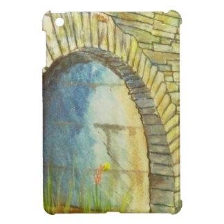 Blue Ridge Tunnel iPad Mini Cases
