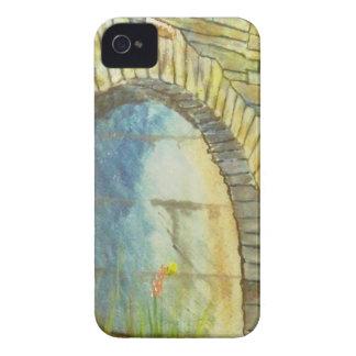 Blue Ridge Tunnel iPhone 4 Case-Mate Case