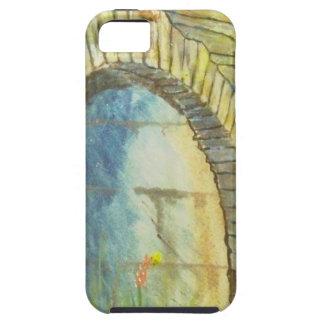 Blue Ridge Tunnel iPhone 5 Covers