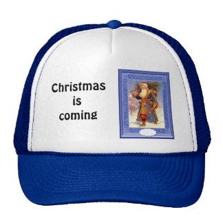 Blue robed Santa, Cap