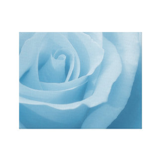 Blue Rose Blossom Canvas Print