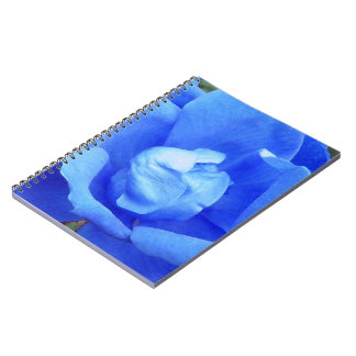 Blue Rose Digitally Enhanced Photo Notebooks