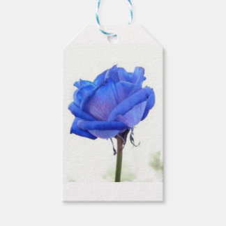 blue-rose gift tags