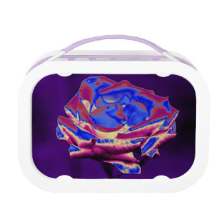 Blue Rose on Purple Lunchboxes