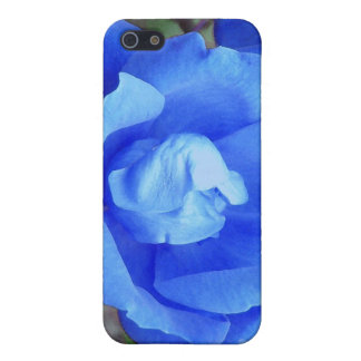 Blue Rose Photo Manipulation Covers For iPhone 5