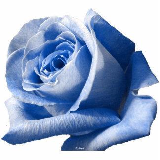 Blue Rose Photo Sculpture