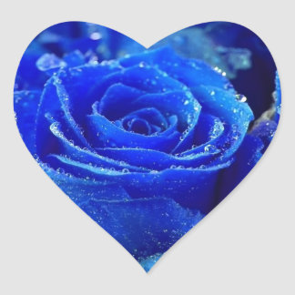 Blue Rose Heart Sticker