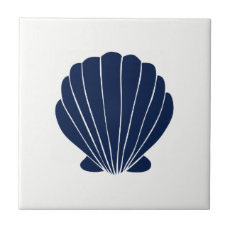 Blue Sea Shell on White Ceramic Tile
