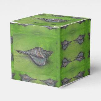 blue seashell on green favor box