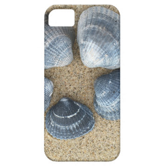 Blue shells iPhone 5 cases