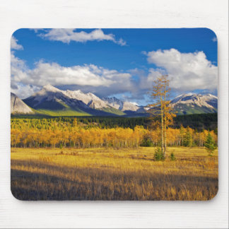 Blue skies and clouds above a meadow mousepads
