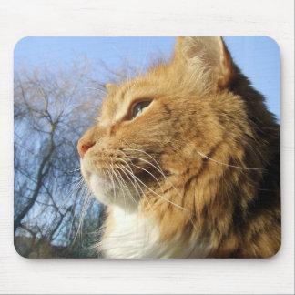 Blue Skies Cat mousemat