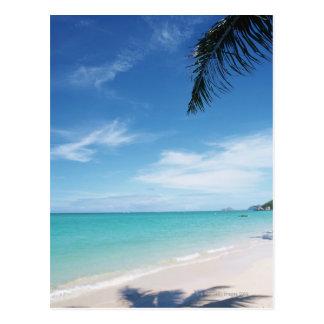 Blue sky and sea 15 postcard