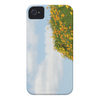Blue Sky Blackberry Bold phone cases Poppies iPhone 4 Case
