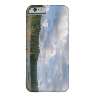 Blue sky Cell Phone and Ipad case