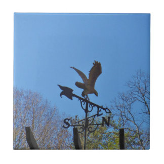 Blue sky, Eagle and Arrow Weather vane Small Square Tile