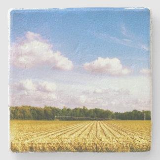 blue sky farm coaster