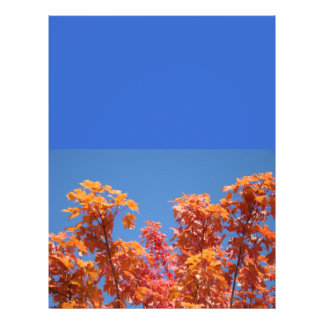 Blue Sky Flyers Mailing Brochures Autumn Leaves