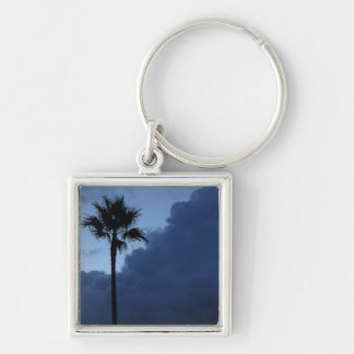 Blue Sky Lone Palm Tree Silver-Colored Square Key Ring