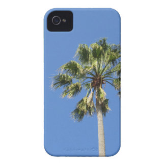 Blue sky palm iPhone 4 cover