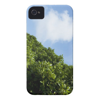 Blue sky with green foliage iPhone 4 Case-Mate case