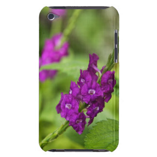 Blue Snakeweed Case-Mate iPod Touch Barely Barely There iPod Case
