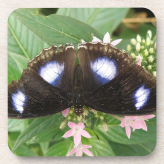 Blue Spotted Butterfly Cork Coasters