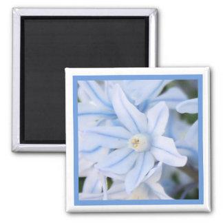 Blue Spring Flowers Square Magnet
