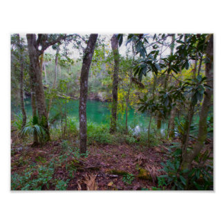 Blue Springs State Park, Florida Poster