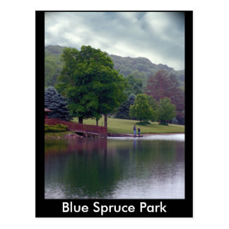 Blue Spruce Park Postcard