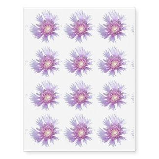 Blue Stokes Aster Flower Blossom