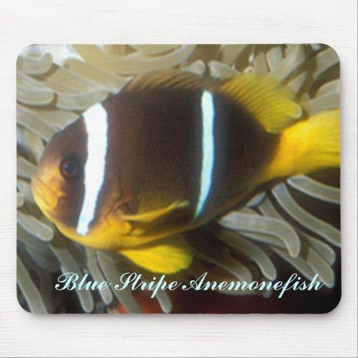 Blue Stripe Anemonefish Mousepad