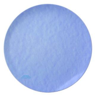 """BLUE STUCCO MELAMINE PLATE"" PLATE"